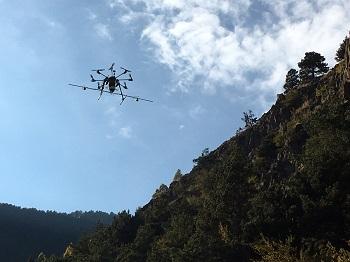 agricultura de precisió amb dron - tractaments contra la processionària