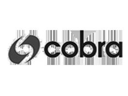 Cobra_logo4
