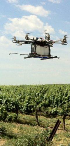 agricultura de precisió amb dron - viticultura